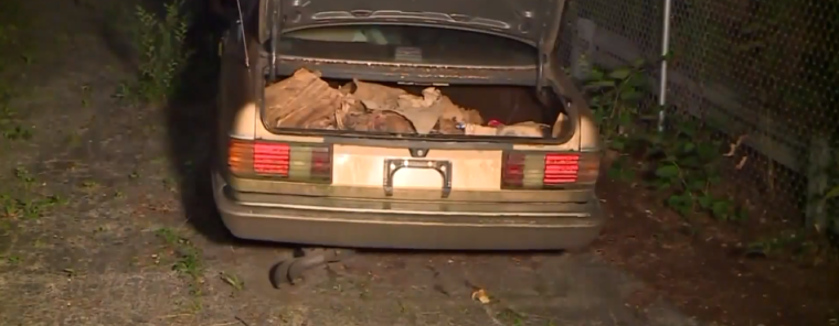 165 Aborted Babies Found in Trunk of Abortionist's Car