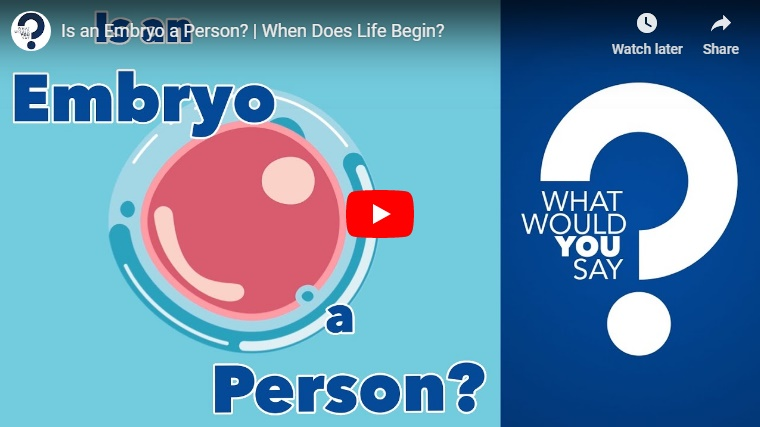 Video: Is An Embryo a Person?