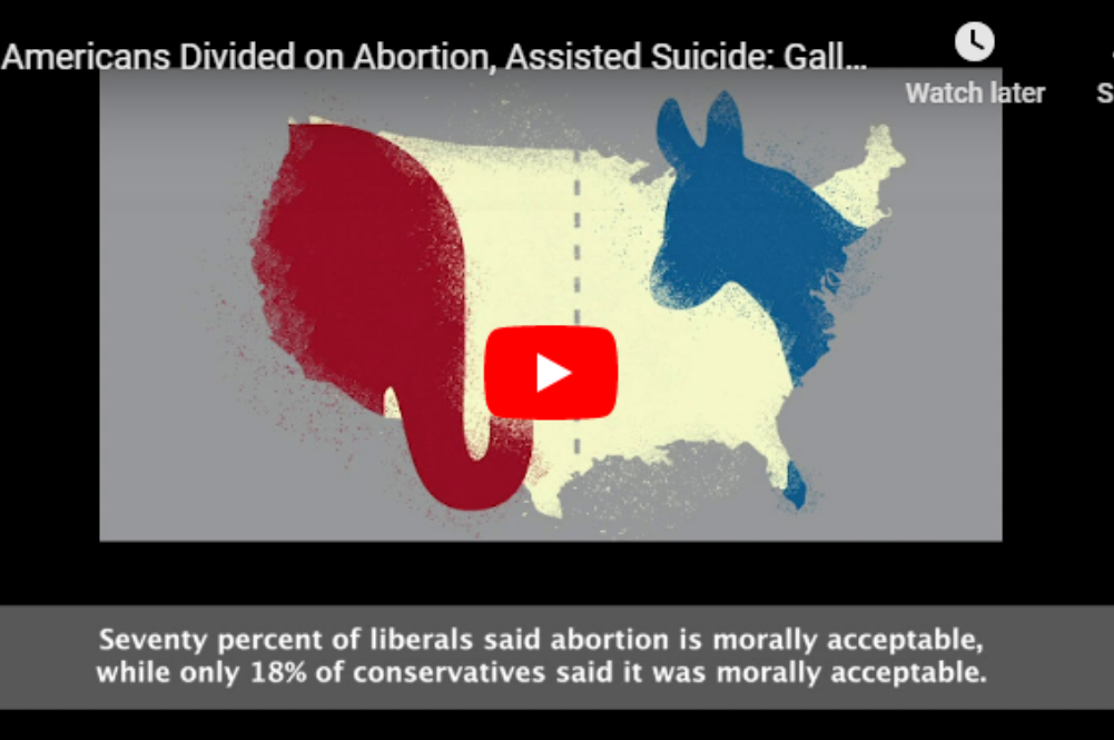 Americans Divided on Abortion, Assisted Suicide: Gallup Survey